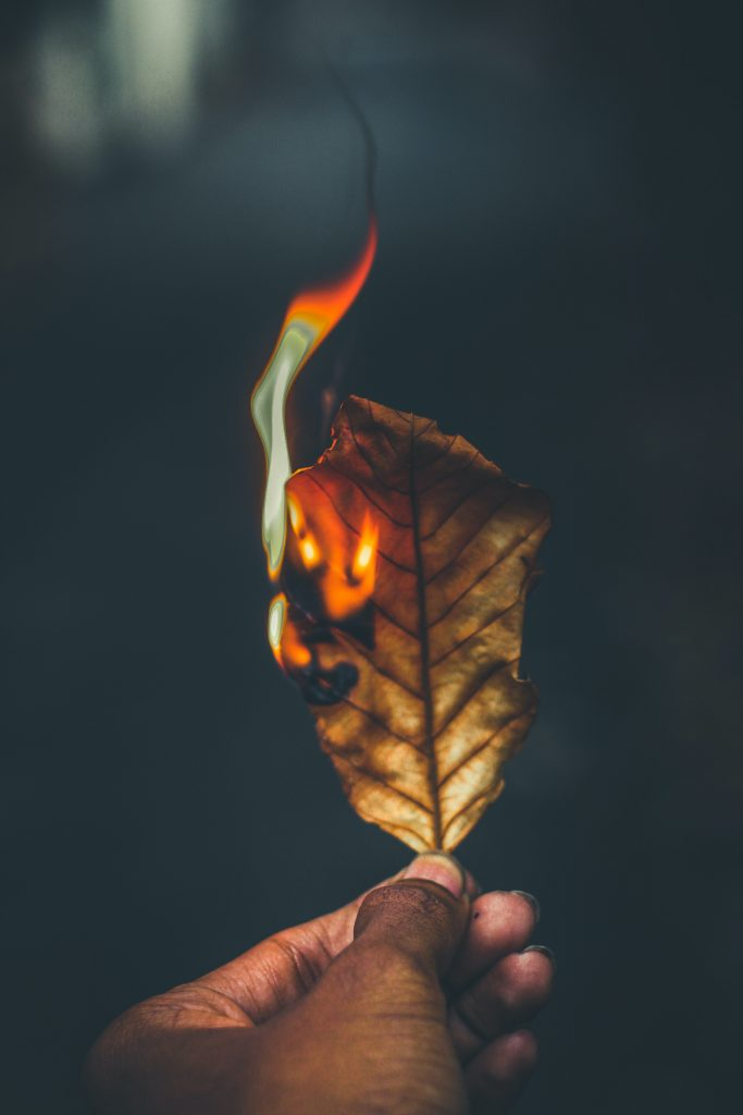 person hand holding burning dry leaf